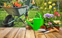 evitar jardin alergia