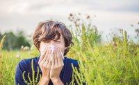 curiosidades alergia primaveral