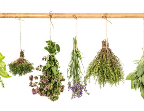 Eliminación de la mucosidad con ingredientes naturales