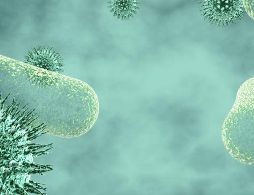Diferencias entre virus y bacterias: Conocerlas para tratarlas